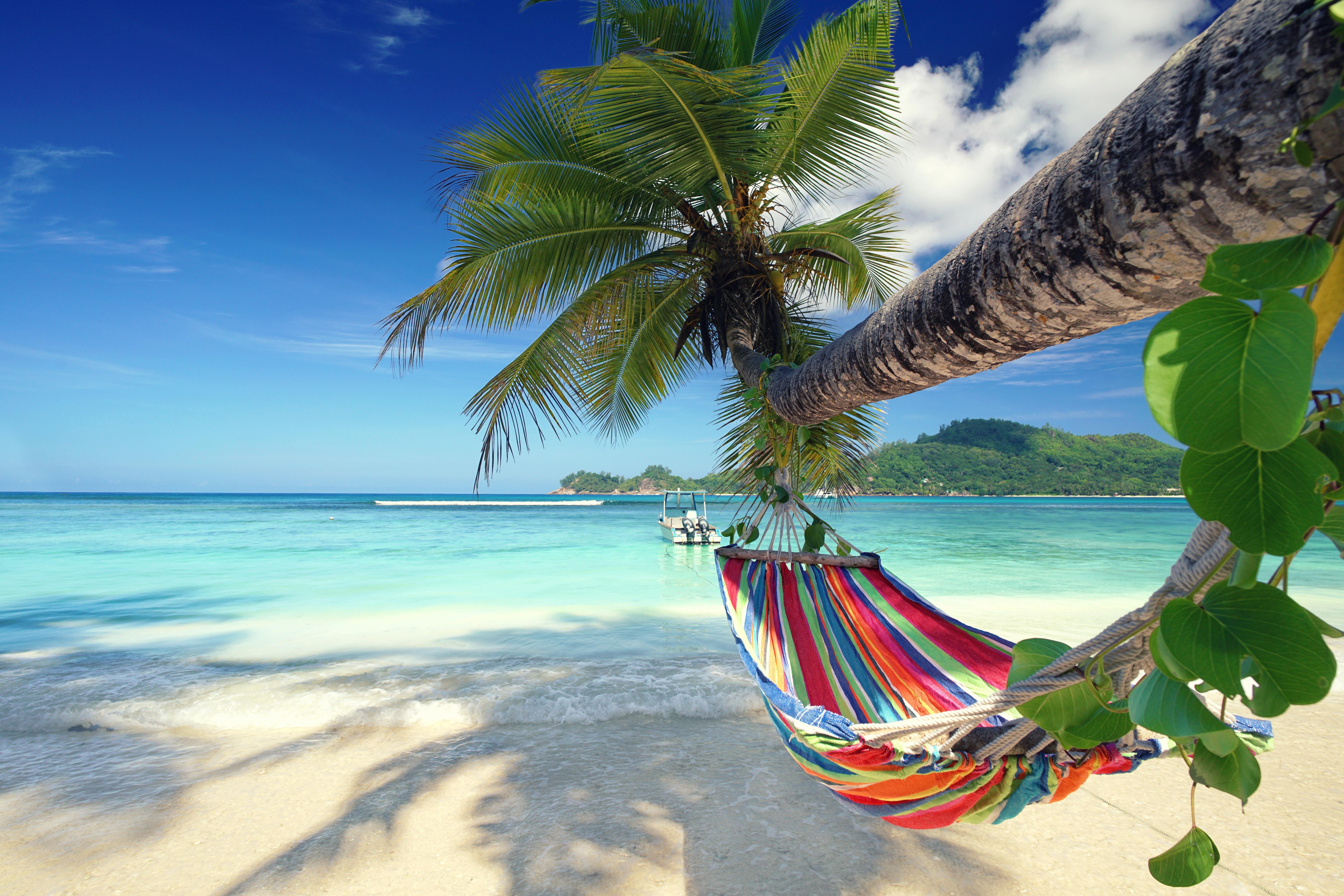 Krank in den Ferien – und jetzt   Aktuell